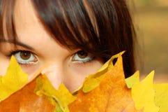 7 jesienią kobieta Zdjęcie Stock