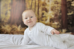 7 month old baby boy. Very happy 7 month old baby boy starting to think about crawling, with 1st teeth, wearing washable eco' nappies, in a wooded bedroom royalty free stock photography