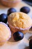 7 muffinserie Arkivfoton