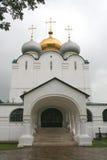 7 novodevichy的女修道院 库存图片