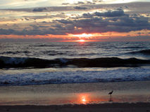 7 oceanów wschód słońca Fotografia Royalty Free