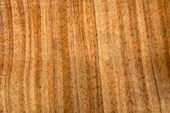 7 papper mönstrat trä royaltyfri foto