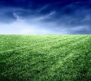 7 pastwiska Obraz Royalty Free