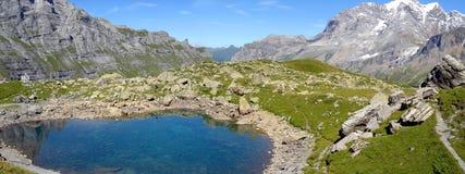 7 schweiziska alps Royaltyfria Bilder