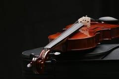 7 skrzypce. Obrazy Stock