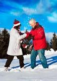 7 zabaw seniora zima Zdjęcia Royalty Free