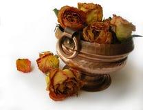 75朵干燥种族罐玫瑰 免版税库存照片