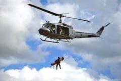 75th Aniversário de RNZAF Airshow 2012 Imagens de Stock