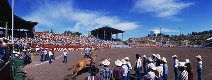 75th Rodeio 1997 de Ellensburg Fotos de Stock