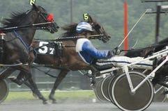 8上马具的赛马比赛 库存照片