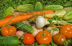 8棵堆蔬菜 免版税图库摄影