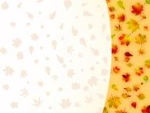 8片秋天看板卡五颜六色的eps叶子 免版税库存图片