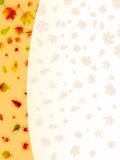 8片秋天看板卡五颜六色的eps叶子 图库摄影