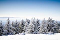 8系列冬天 免版税库存图片