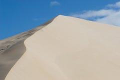 8 αμμόλοφοι στοκ εικόνες