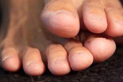 8 пальцев ноги Стоковая Фотография