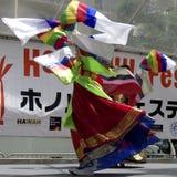 8 празднество honolulu Стоковое фото RF