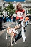8 2011 mot demonstration kan milan perreras Royaltyfri Bild