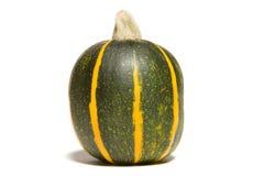 8-Ball Zucchini Stock Image