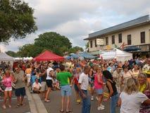 8 blokowy Florida schronienia głowy palmy papugi przyjęcie Fotografia Royalty Free