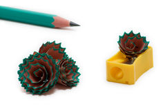 8 blyertspennashavings Arkivfoto