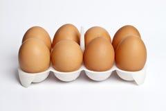 8 Eier in einem Paket Lizenzfreie Stockfotos