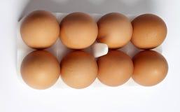 8 Eier in einem Paket Stockfoto