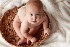 8 engraçados bebê mês-velho Imagem de Stock Royalty Free