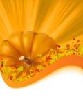 8 höst färgrik eps låter vara pumpa stock illustrationer