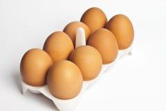 8 huevos en un conjunto Foto de archivo