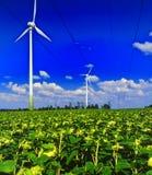 8 ingen windmill Royaltyfria Foton