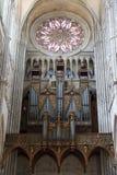 8 katedra Amiens France Fotografia Royalty Free