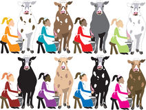 8 Ladies Milking Stock Image