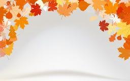 8 leafs för eps för abstrakt bakgrund klipska Royaltyfri Bild