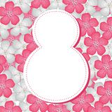8 March background. 8 March congratulatory background with pink and white flower Royalty Free Stock Photography