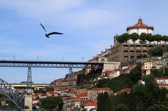 8 Porto Zdjęcia Stock