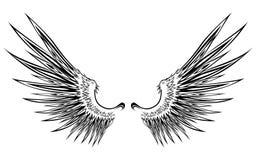 8 skrzydło Zdjęcie Royalty Free