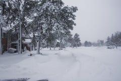 8 snowpocalypse zdjęcie stock