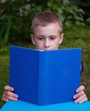 8-year schoolboy reading book Royalty Free Stock Images