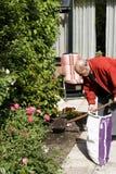 80+ het hogere werken in tuin Stock Afbeeldingen