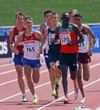 800 metres men group Royalty Free Stock Photos