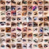 81 retratos dos olhos. Imagem de Stock Royalty Free