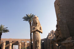 86 kolos van Ramses II Stock Afbeeldingen