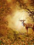 87 fantazj sceneria Obrazy Royalty Free