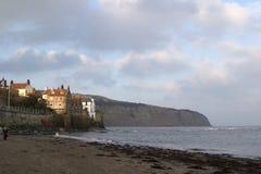 8997, louro das capas do pisco de peito vermelho, costa do leste de Yorkshire, abril 2006 Imagens de Stock
