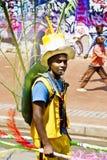 8th karnevaljoburg ståtar gatan Arkivbild