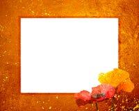 8x10 grunge ramowy zmierzch Fotografia Stock