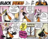 9只黑色可笑的鸭子情节主街上 图库摄影