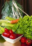 9圣诞节超级市场 免版税库存图片