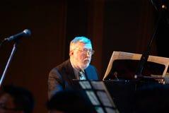 9曼谷丹haerle 10月钢琴使用 免版税库存照片
